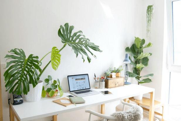 reforma baño plantas sevilla