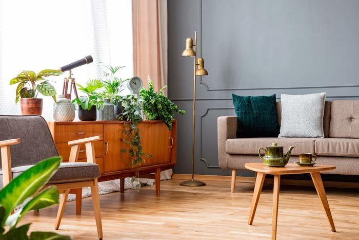 Plantas sevilla casa decoración