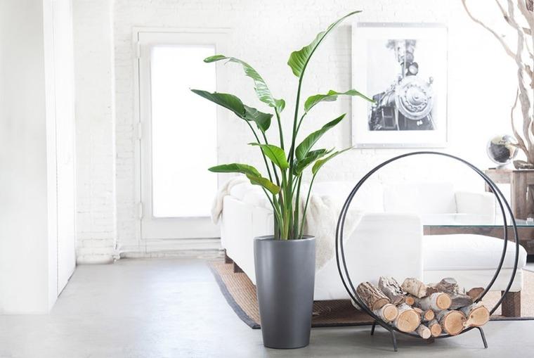 plantas salon Plantas-hogar-reformas-baños-sevilla