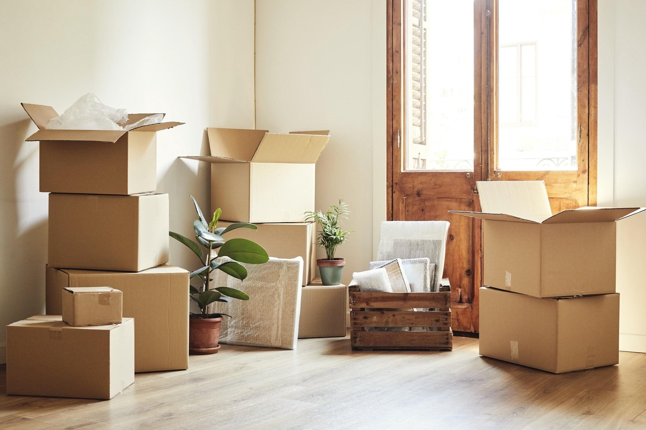 cajas para reforma
